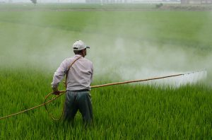 Local Application of Pesticides by Spraying Fields
