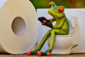 Frog calculating the cost of toilet paper!