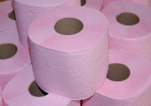 Multiple rolls of toilet paper